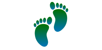 Icon of two feet