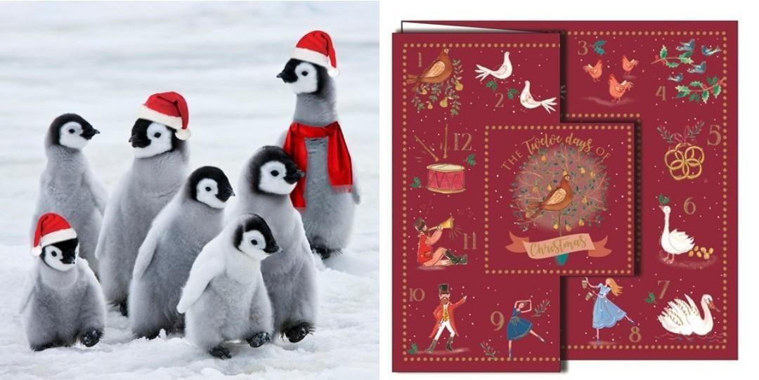Barnardo's Christmas card designs