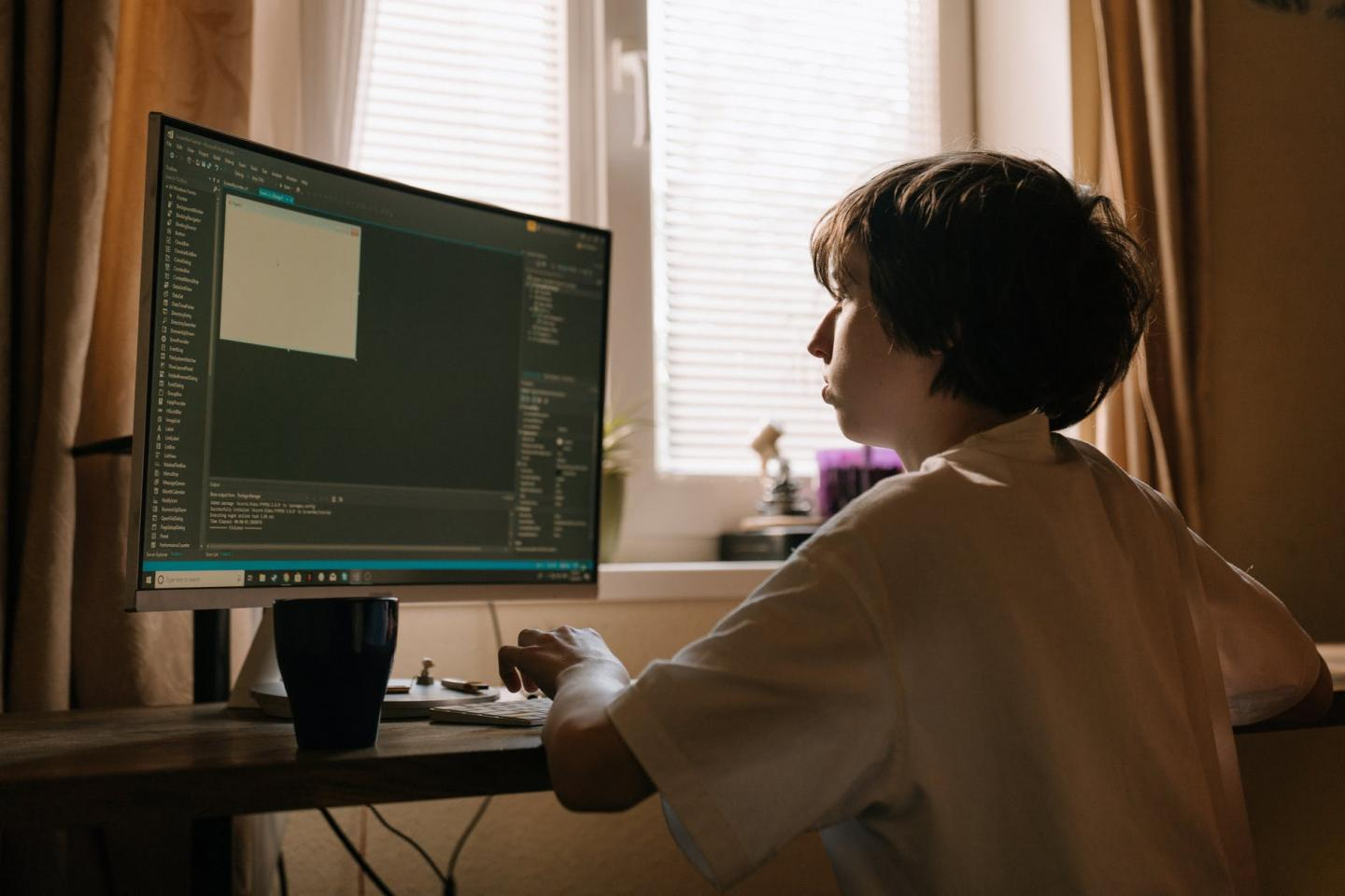 Schoolboy working on a computer