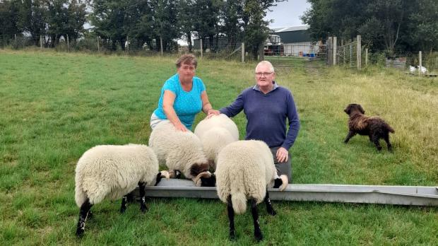 Foster carers Shirley and Trevor on their farm